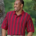 Casual Male Big & Tall™ Men's Harbor Bay® Vertical Striped Polo-style Shirt